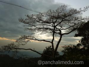 Evening View of Panchalimedu